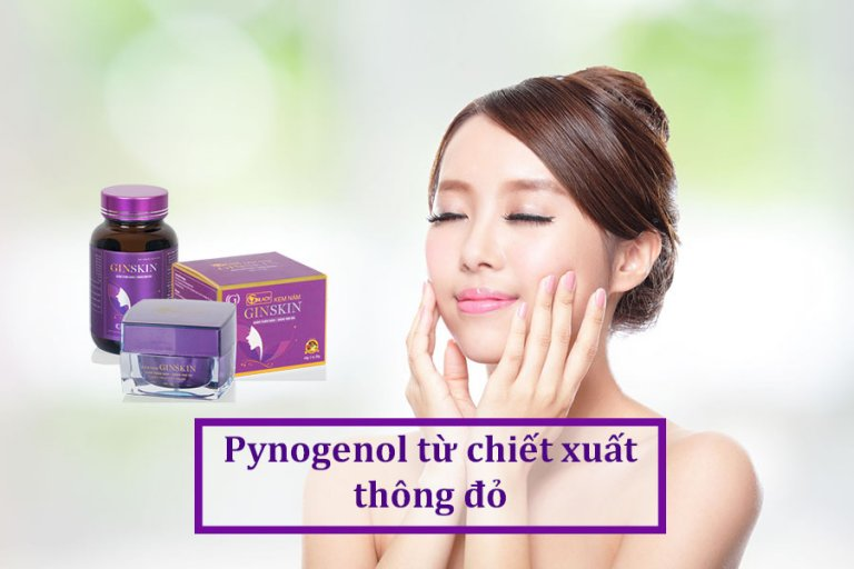 pynogenol chiet xuat thong do
